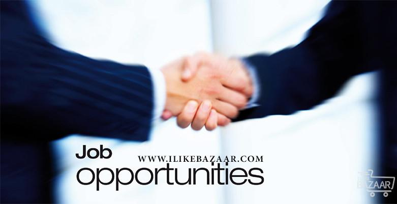 تصویر شماره 10 کشور با بالاترین فرصت های شغلی در خارج از کشور