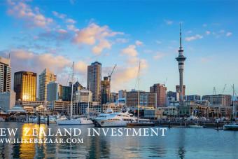 انواع ویزای سرمایه گذاری نیوزیلند
