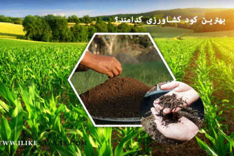 بهترین کود کشاورزی و مورد تایید صنعت کشاورزی کدامند