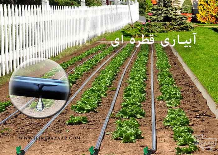 تصویر شماره 6 مورد از فواید آبیاری قطره ای در صنعت کشاورزی