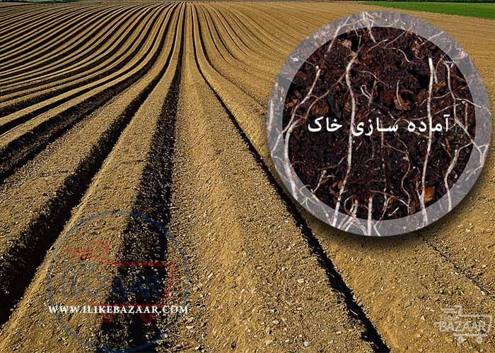 تصویر شماره نحوه آماده سازی خاک برای کاشت نهال