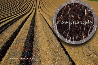 نحوه آماده سازی خاک برای کاشت نهال