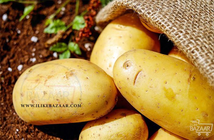 تصویر شماره آموزش کاشت سیب زمینی در خانه
