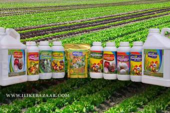معایب مصرف کود شیمیایی برای مزارع